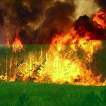В Ізюмі – два нових вогнища пожежі. Локалізувати нещастя, як і раніше, не вдається