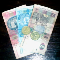 Чиновники в погонах здатні порушувати закон за платню, яка значно менша від 18 гривень