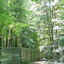 «Зелений фронт» випробував на міцність паркани Лісопарку