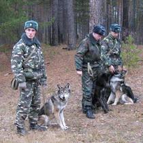 Харківська обласна митна служба оприлюднила підсумки роботи за 2010 рік