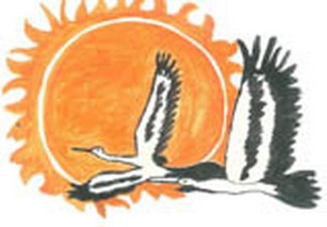 У Харкові розпочався конкурс дитячого малюнку. Такий проект спрямований на усвідомлення екологічних проблем та зменшення дитячої злочинності