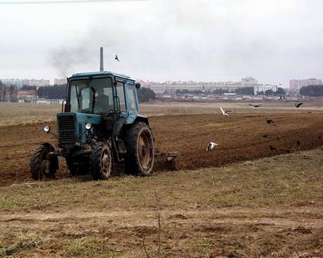 У Харкові сформувалася ініціативна група, яка офіційно розпочала готувати всі необхідні документи для проведення всеукраїнського земельного референдуму