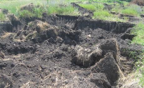 За попередніми підрахунками прибутки від незаконного продажу чорнозему на Харківщині перевищили 150 мільйонів гривень (ФОТО)