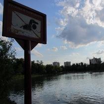 У Харкові закрили деякі пляжі: у воді «плаває» мікроб, схожий на холеру