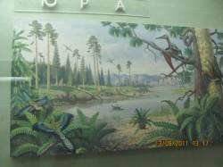 Фоторепортаж з експозиції Національного науково-природничого музею Національної Академії Наук України