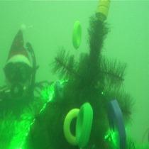 У Донецькій області встановили підводну ялинку