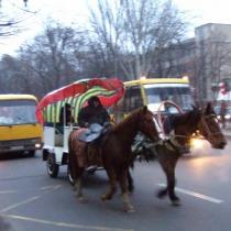 Коні для Євро: У Донецьку хочуть відродити гужовий транспорт