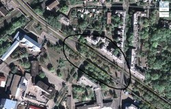 Під загрозою опинилось 6 220 дерев, що ростуть вподовж Московського проспекту. Вирубка почалася неподалік станції метро «Завод ім. Малишева»
