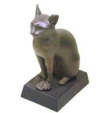 Міжнародний день кішки: аристократи мейн куни, принцеси-абіссінки та сфінкси, що нагадують марсіян