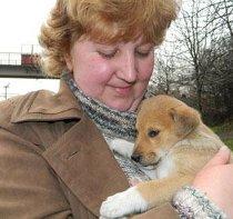 Молодь в Артемівську з власної волі прибирає місто і рятує безпритульних тварин