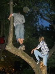 той, хто не бачив сцени, мав лише один вихід - споглядати з дерева
