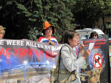 Харків'яни провели пікет на захист безпритульних тварин