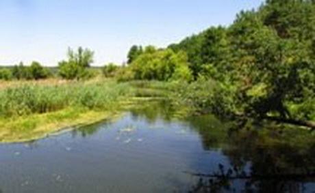 """Екологи оскаржили """"заказуху"""" від лісників проти Слобожанського нацпарку"""