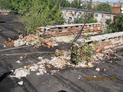 На занедбаному даху житлового будинку виросли метрові дерева