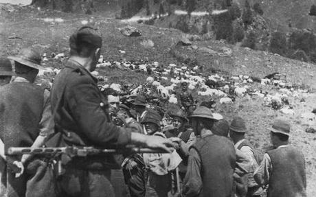 Повстанський рух 1921 р. на Луганщині:  Отаман Каменюка
