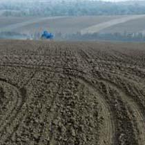 На Луганщині  кінний завод кримінально розорав заповідні землі