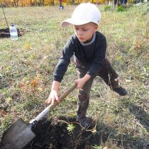У Лозовій День Героїв відзначили мітингом і посадкою дерев