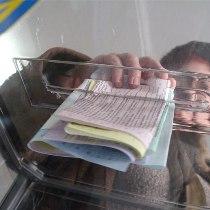 виборчий бюлетень