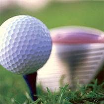 Добкін 4 дня на тиждень грає в гольф