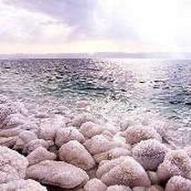 Проекти порятунку Мертвого моря