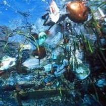 Пляма бруду вагою 200000 тон плаває в Атлантичному океані