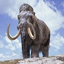 Кров мамонтів мала властивості антифризу