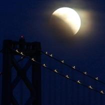 Повне сонячне затемнення відбудеться 11 липня