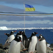 В Україні шукають добровольців для роботи в Антарктиді