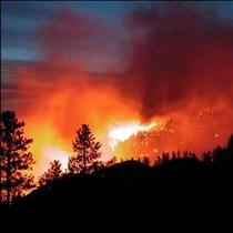 В Україні теж горить ліс