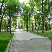 У Харкові з'явиться новий парк. Де – сюрприз