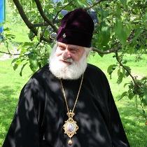 Митрополит Софроній: Звернення до Бога рідною мовою – природнє. Який у цьому гріх?