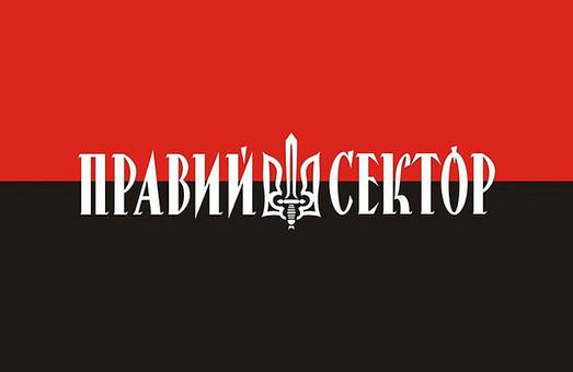 Правий сектор, нова політична партія