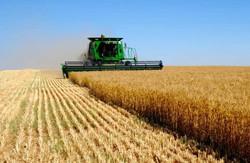 У Харківському районі експерти та студенти обговорили питання механізації виробництва сільськогосподарської продукції