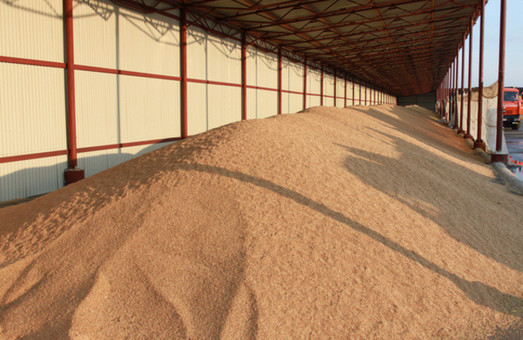 На елеватори Харківської області сільгосптоваровиробниками завезено майже 20 тисяч тонн зерна