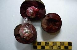 У Харкові ув'язненому прислали наркотики у буряку (ФОТО)