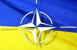 НАТО готово забезпечити потреби української армії