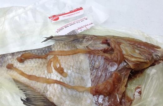 У супермаркеті Харкова продається риба з глистами