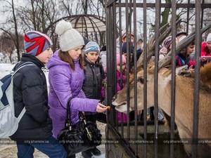 Зоопарку потрібні гроші