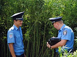 Дніпропетровські міліціонери  продають «травичку»