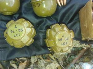 У лісосмузі знайшли сумку з бойовими гранатами (фото)