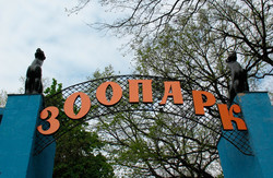 Харківський зоопарк допоможе сім'ям колег з Тбілісі