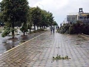 Луганськ сильно постраждав від урагану