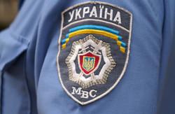 Правоохоронці дали коментар з приводу побиття Анатолія Родзинського