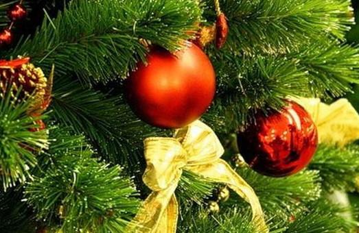 На городян чекають урочисті заходи з відкриття новорічних красунь