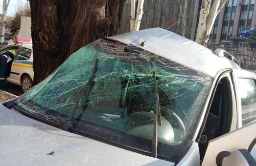 У Кривому Розі авто «врізалося» в дерево (фото)