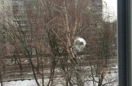 У Харкові з пневматичної зброї стріляли по навчальному закладу (фото)