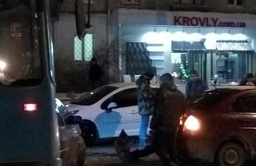 На вул. Дерев'янка автівка збила дівчину (фото)