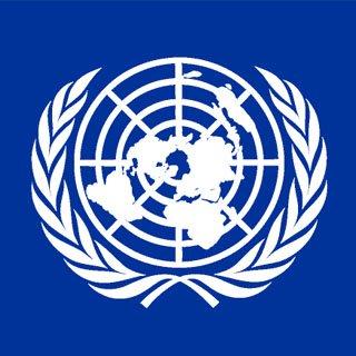 Раду ООН закликали переконати Росію надати доступ міжнародним організаціям до Криму