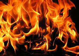У Харкові вогонь спалив 2 мікроавтобуси з господарчими будівлями