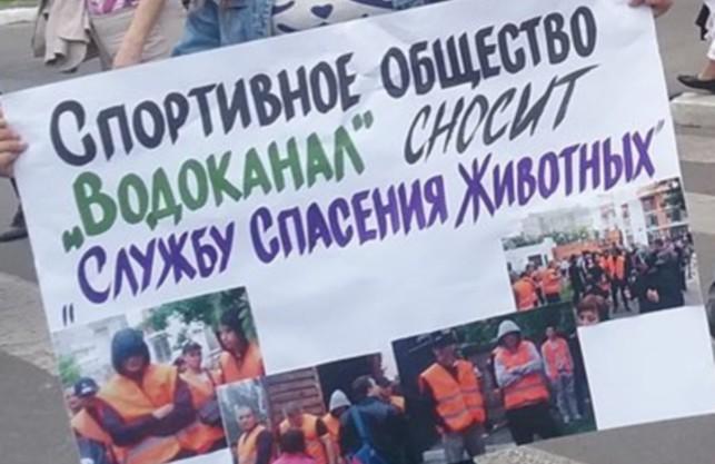 Активісти протестують проти зносу Служби порятунку тварин